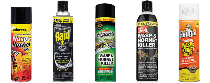 How to Safely Use Wasp and Hornet Spray - Do it Best - World's Largest  Hardware Store